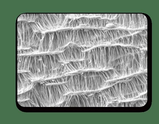 特殊微孔結構